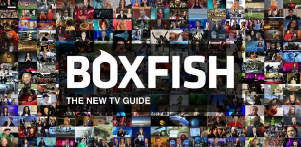 boxfish